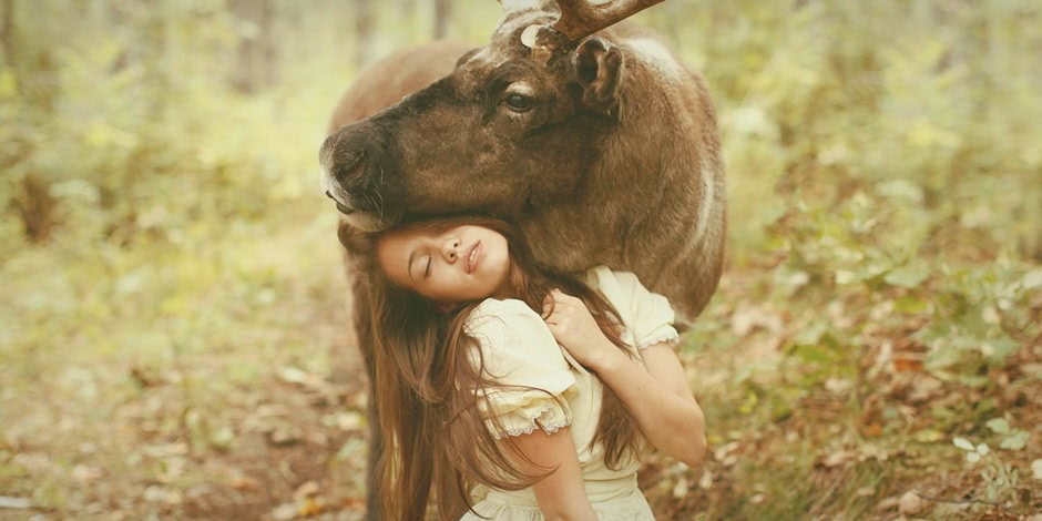 Photos by Russian photographer Katerina Plotnikova: Part 2