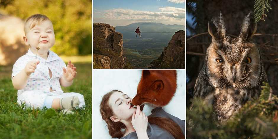 The Best of Russia 2016: 100 most amazing photos of the contest