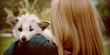 Photo of Spring and a girl: Cute friendship between a fox and a human