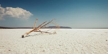 White silence: Walking on a shore of Koyashskoe lake in Crimea