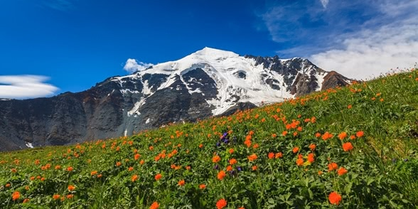 Beauteous landscapes of Altai Krai in photos by Anton Petrus